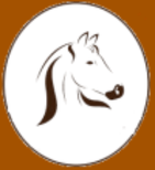 Madams-horse-shop.nl