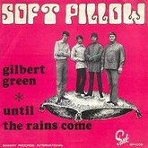 softpillowgilbert.large.jpg