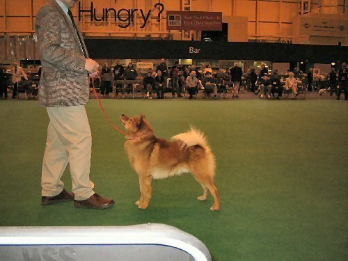 142-taikaopdecrufts.medium.jpg