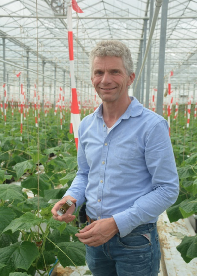 Cucumber grower Herman Keijsers