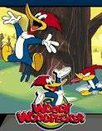woody-woodpecker.large.jpg