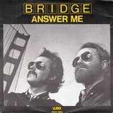 bridgeanswer.large.jpg