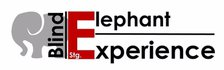 Blindelephantexperience.jouwweb.nl