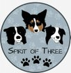 Spirit Of Three