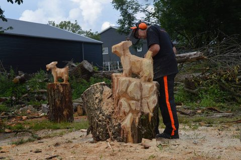 chainsaw carving goat, kettingzaag demonstratie