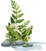 flower-34592_640.png