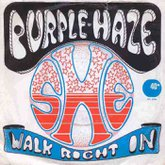 purple-haze-she-walk-right-in.large.jpg