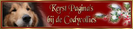 kerstbanner-codycollies1.large.jpg