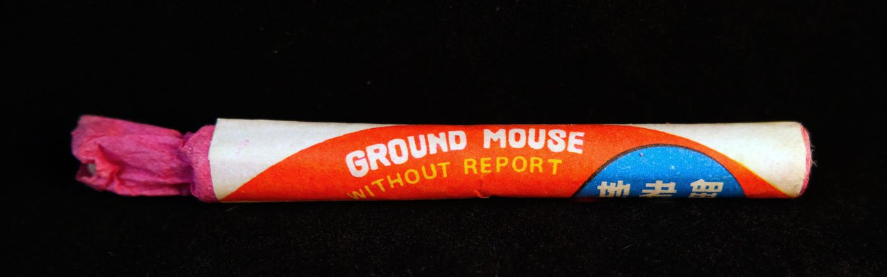 Ground Mouse without report