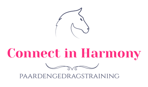 Connect in Harmony