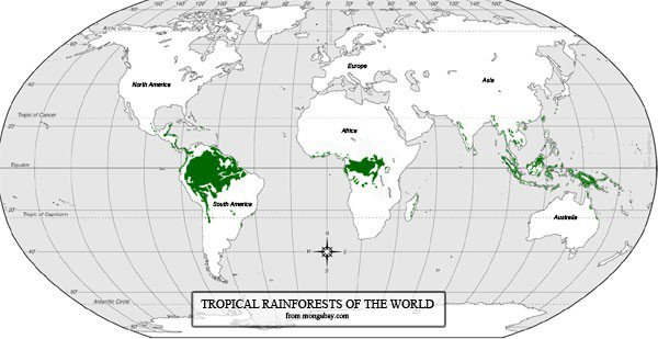 world-rainforest-map-sm.large.jpg