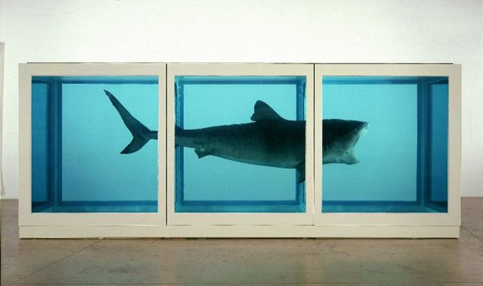 DamienHirst_ThePhysicalImpossibilityofDeath-1.jpg