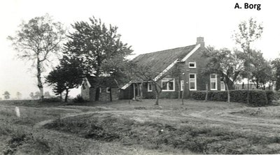 bourtange-piketlaan-1.large.jpg