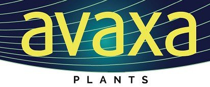 Avaxa Plants B.V. | Quality Traders