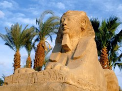 foto-egypte-011.large.jpg