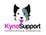 Kyno-support.nl