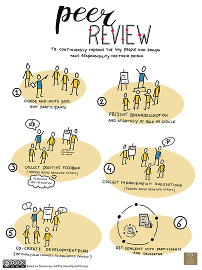Individual S3 Visualisation or Poster: Peer Review