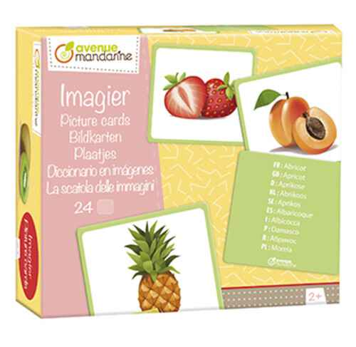 Educatieve plaatjes - Fruit JE509 (Avenue Mandarine)