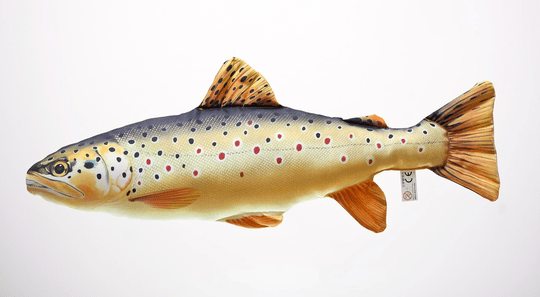 """GABY FISH """"THE BROWN TROUT"""""""