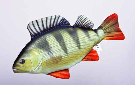 """GABY FISH """"THE PERCH"""""""