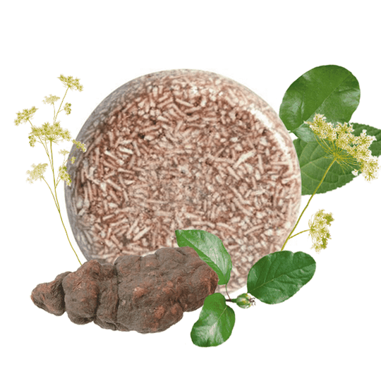 PURC Shampoo bar Polygonum Multiflorum