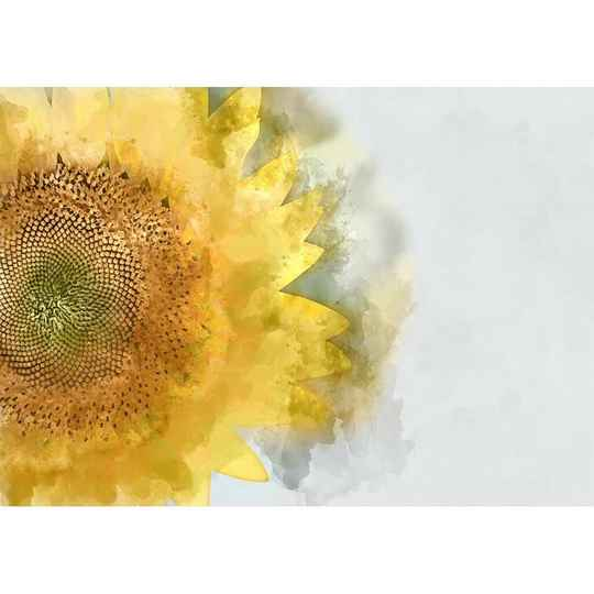 Sunflower A1