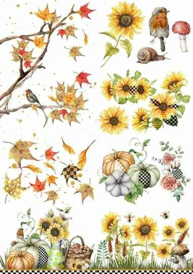 Fall into Whimsy