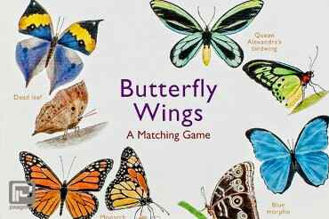 Butterfly Wings  A Matching Game