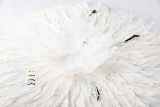 Feather - Juju Round - goose feathers  : white with a little black - M