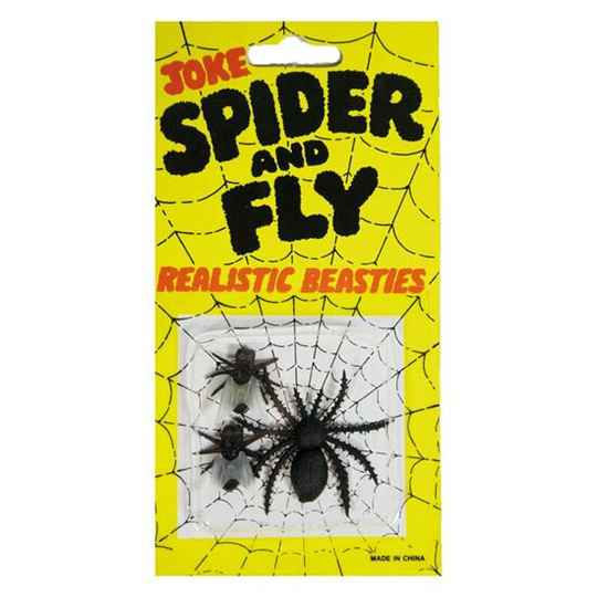 Halloween spider and fly