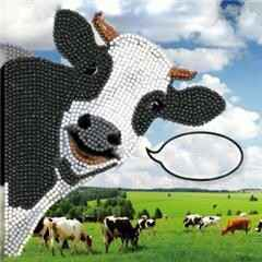 Funny Cow 18x18
