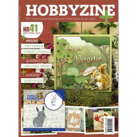 Hobbyzine Plus 41
