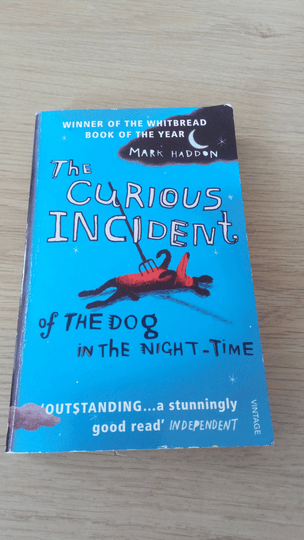 Mark Haddon - The curious incident of the dog in the night time