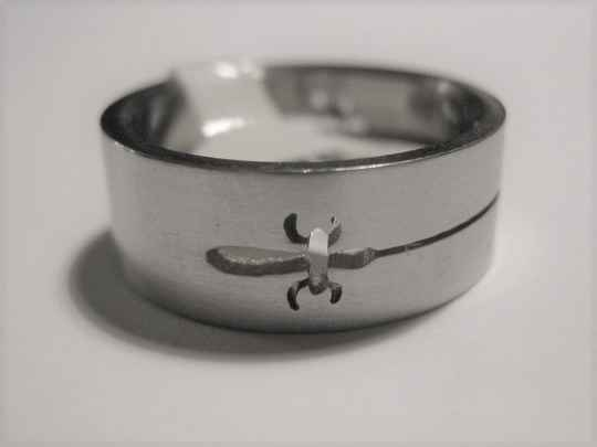 [13017]  Ring stainless steel