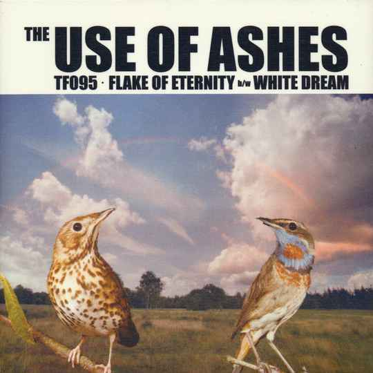 """TF095 // THE USE OF ASHES - FLAKE OF ETERNITY - SLEEVE H (7"""")"""