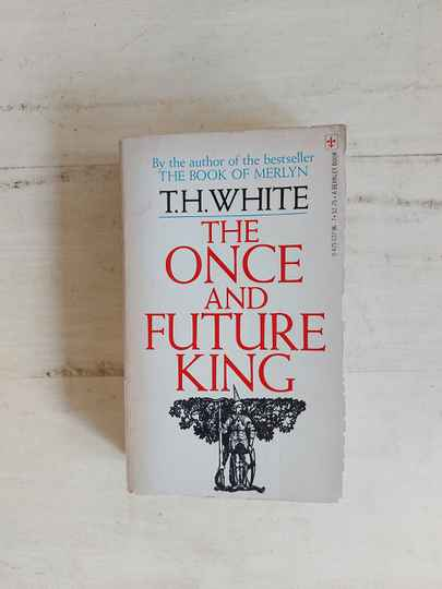 The once and future king - T.H. White