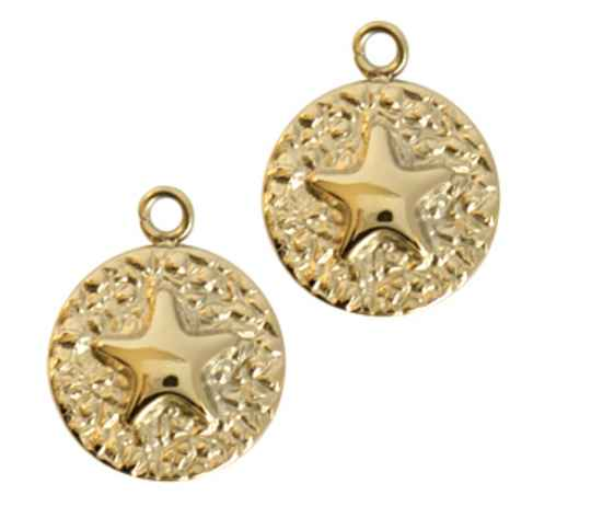 Stainless steel coin star gold rvs 18x14mm