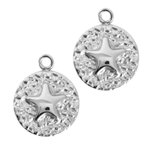 Stainless steel bedel coin star zilver rvs 18x14mm