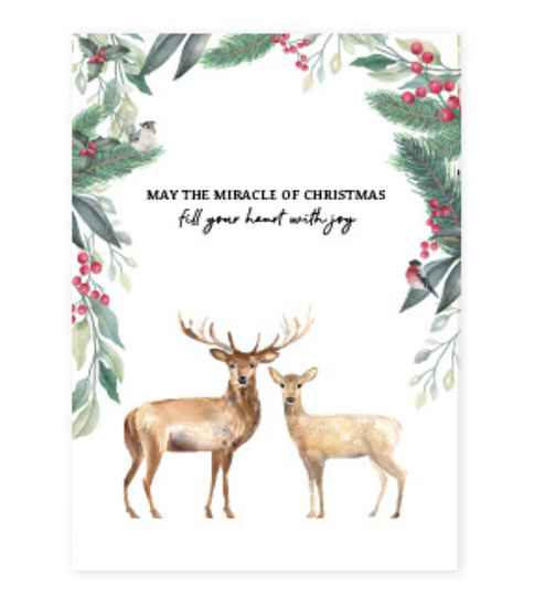 Kaartje voor sieraden May the miracle of Cristmas fill your hart with joy