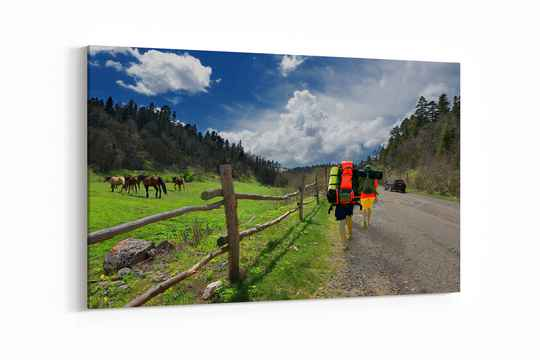 Horses and tourists to hike the mountain trails