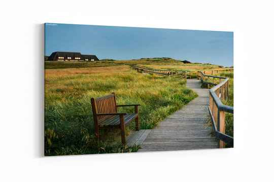 Wood walkway through grassy dunes , at North sea , in Germany