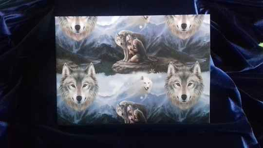 Wrapping Paper, Protector
