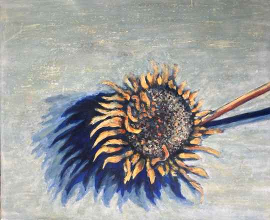 Dried Sunflowers | Adéle du Plessis | Still-life and Flora Painting