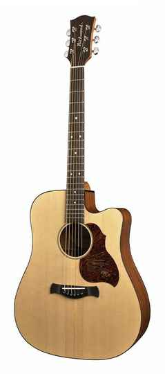 Richwood Master Series D20CE Dreadnought CEQ