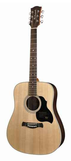Richwood Master Series D60 Dreadnought