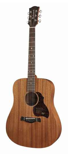 Richwood Master Series D50 Dreadnought