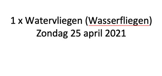 Watervliegen 25 april 2021 (wasserfliegen) Horst (NL)
