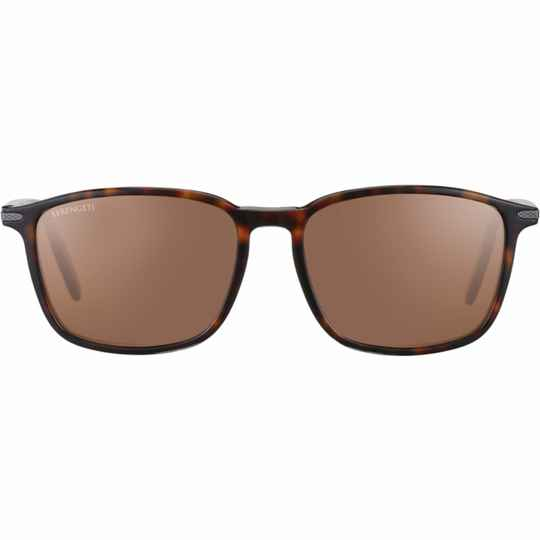 Serengeti Lenwood Shiny Dark Havana Polarized Drivers 8933