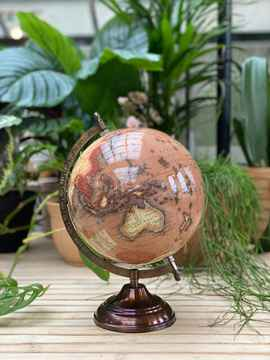 Globe Brown XL