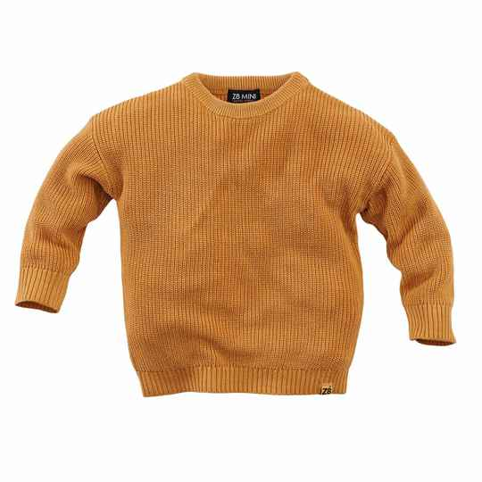 Z8 Limited edition sweater savory - crazy curry